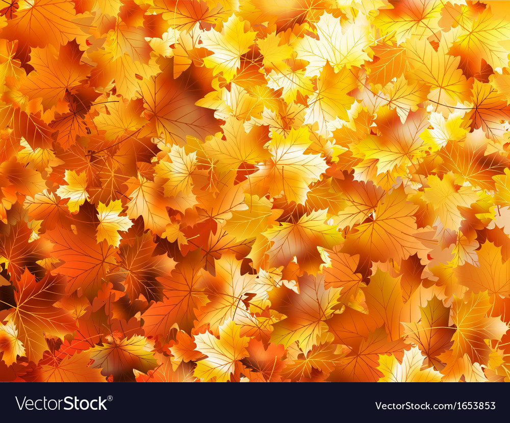 Colorful and bright background eps 10 vector | Price: 1 Credit (USD $1)