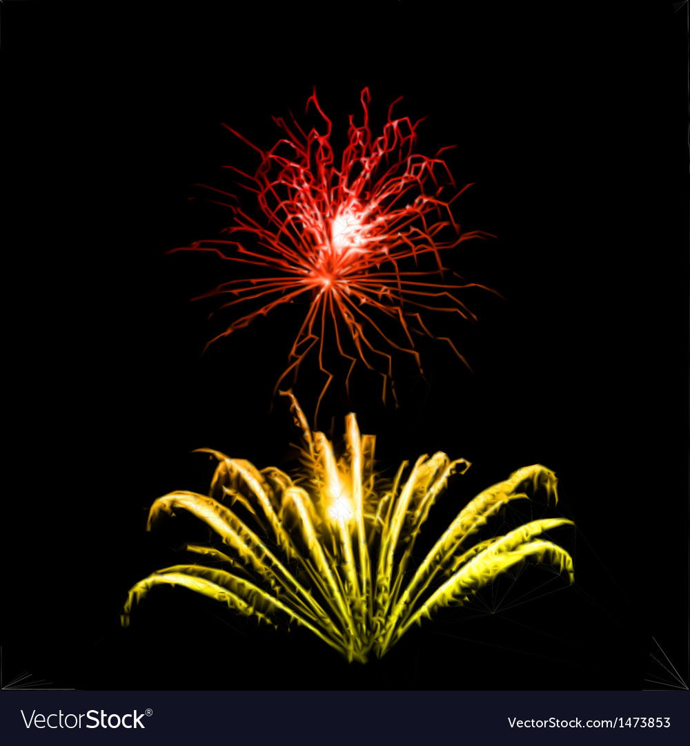 Fireworks in the night sky vector   Price: 1 Credit (USD $1)