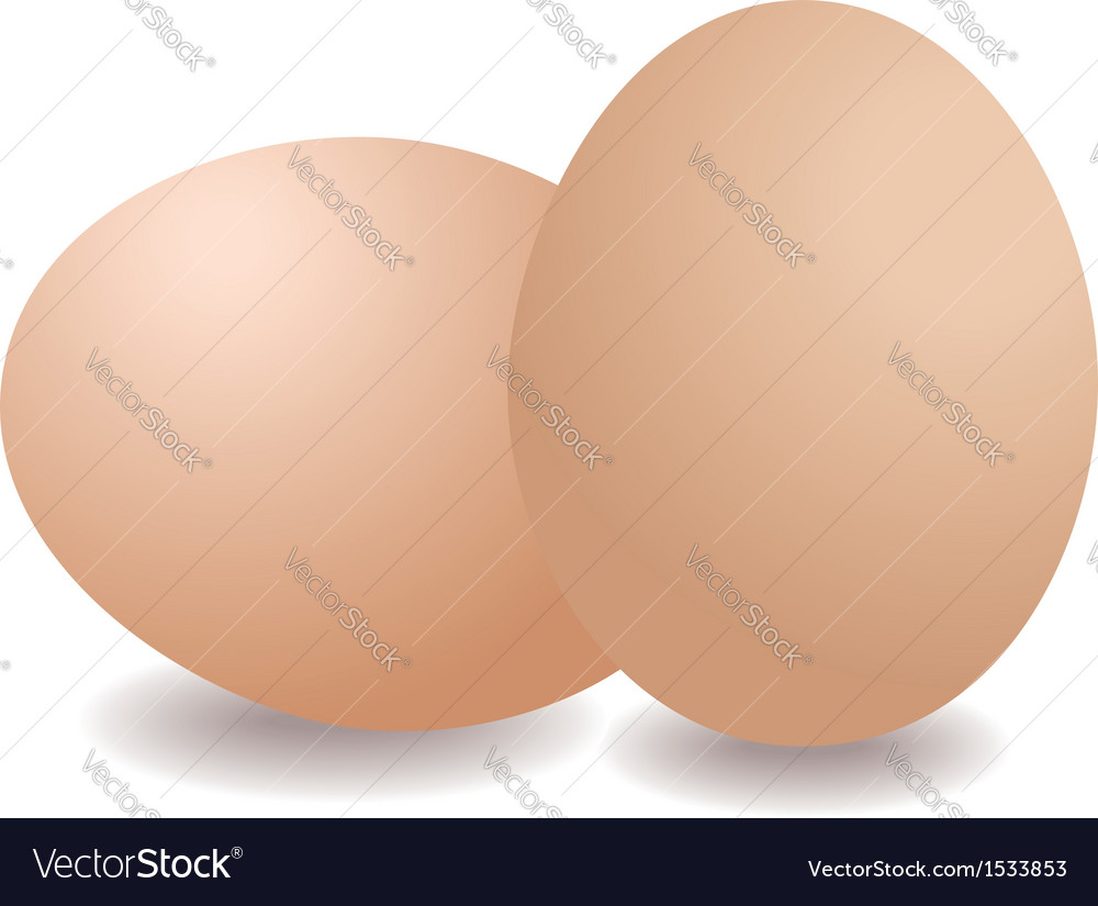 Two eggs vector | Price: 1 Credit (USD $1)