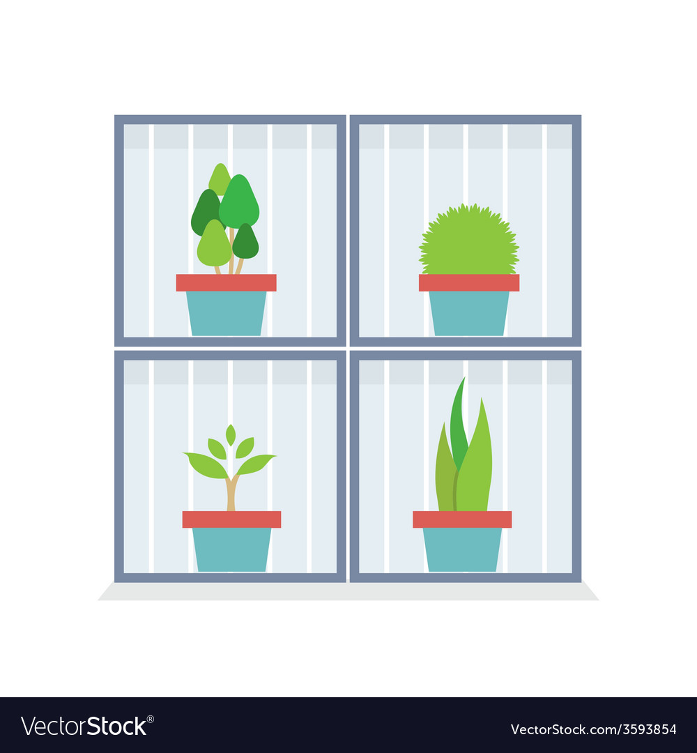 Flat design potted plants in the box vector | Price: 1 Credit (USD $1)
