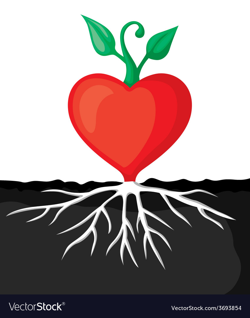 Heart sprout vector | Price: 1 Credit (USD $1)