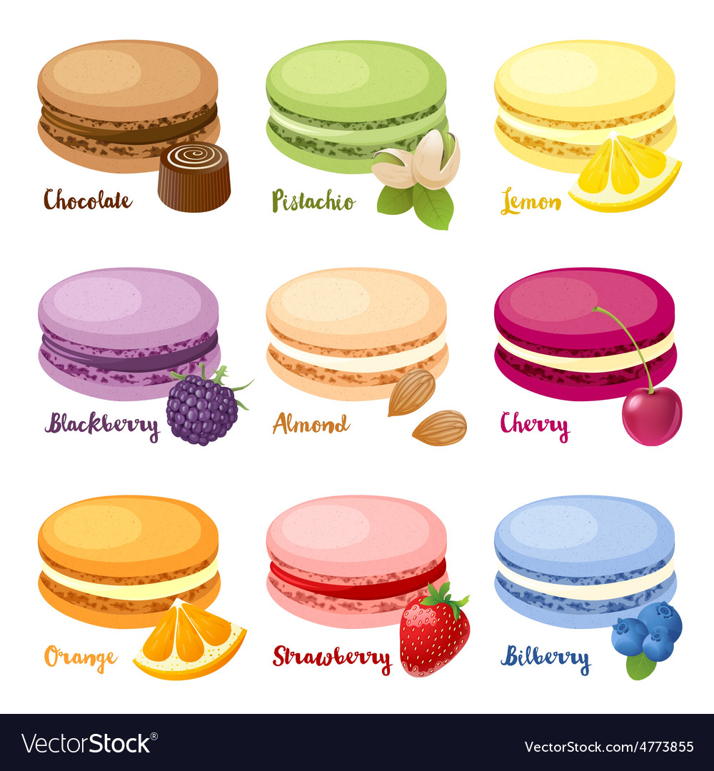 Set of macaroons vector