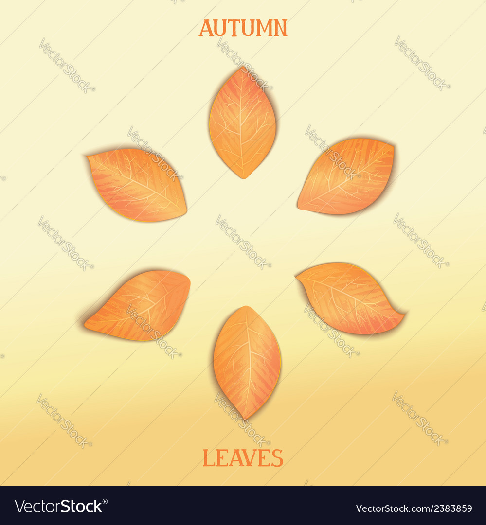 Set autumnal foliage vector | Price: 1 Credit (USD $1)