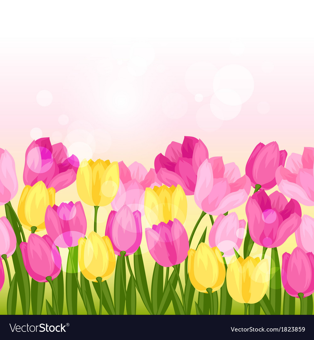 Spring flowers tulips seamless pattern horizontal vector | Price: 1 Credit (USD $1)