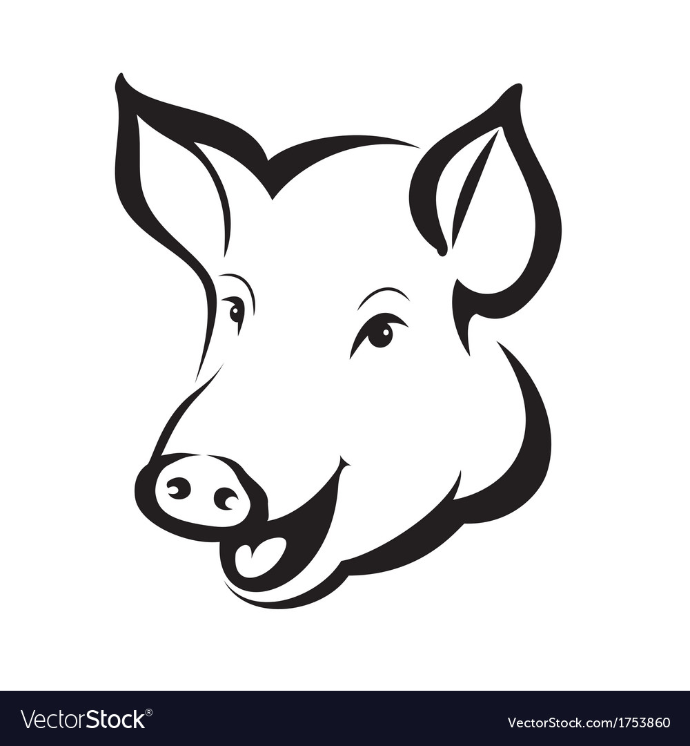 Pig head vector | Price: 1 Credit (USD $1)