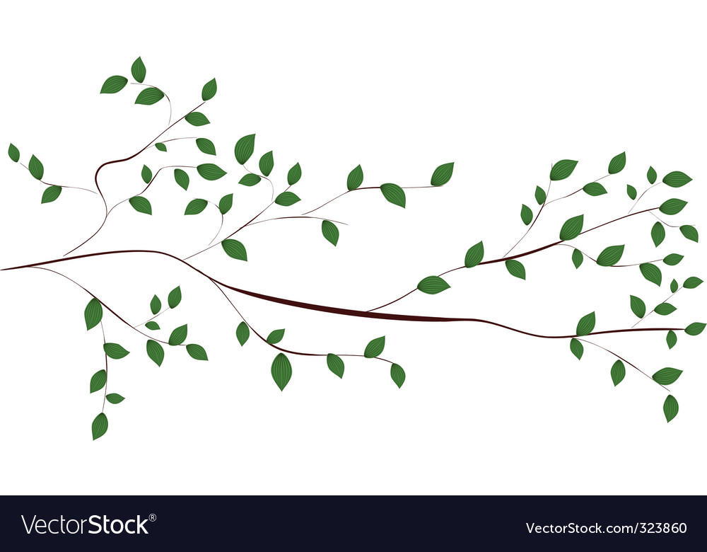 Tree branch vector | Price: 1 Credit (USD $1)