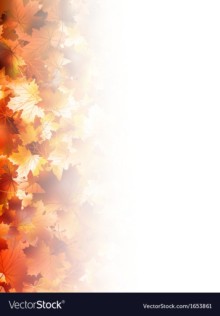 Autumnal foliage against white eps 10 vector | Price: 1 Credit (USD $1)