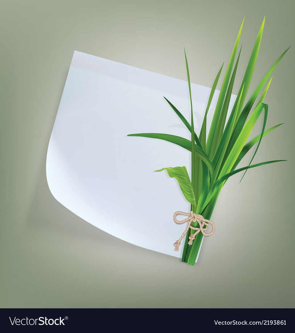 White paper with grass and flowers vector | Price: 1 Credit (USD $1)