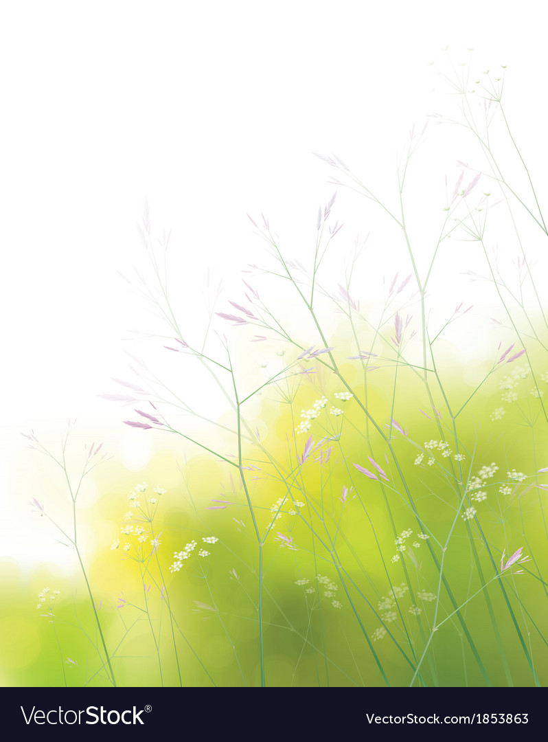 Spring field background vector | Price: 1 Credit (USD $1)