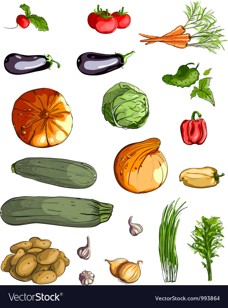 Fresh vegetables green collection vector | Price: 3 Credit (USD $3)