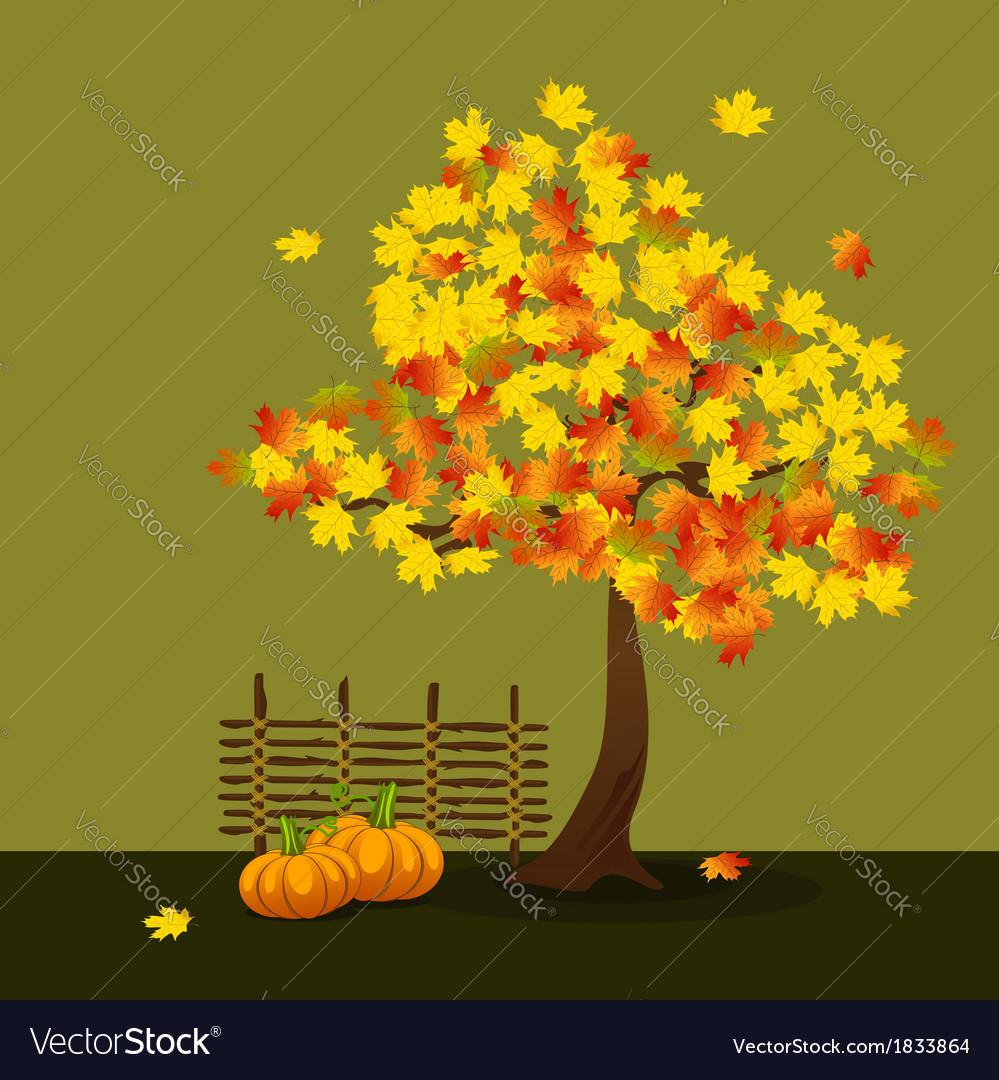 Yellow and orange maple vector | Price: 1 Credit (USD $1)