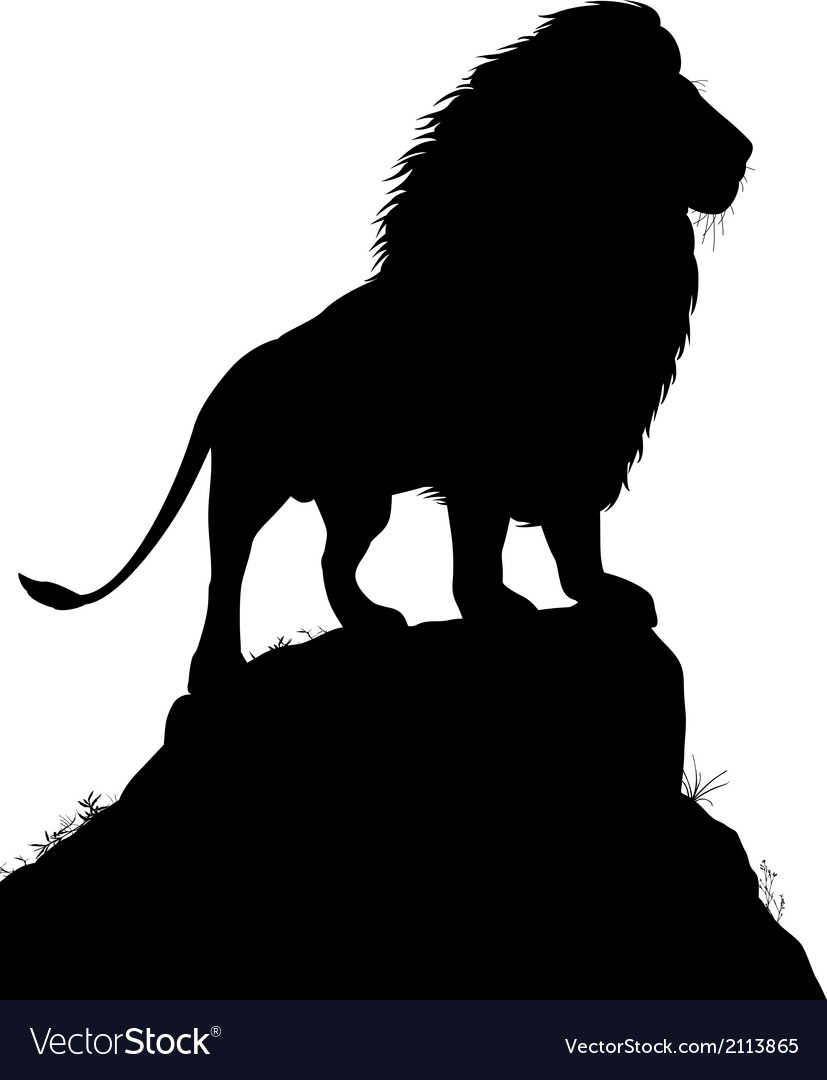 Majestic lion vector | Price: 1 Credit (USD $1)