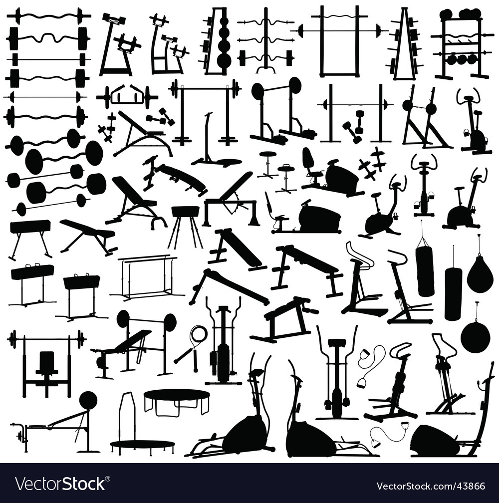 Gym equipment vector | Price: 1 Credit (USD $1)