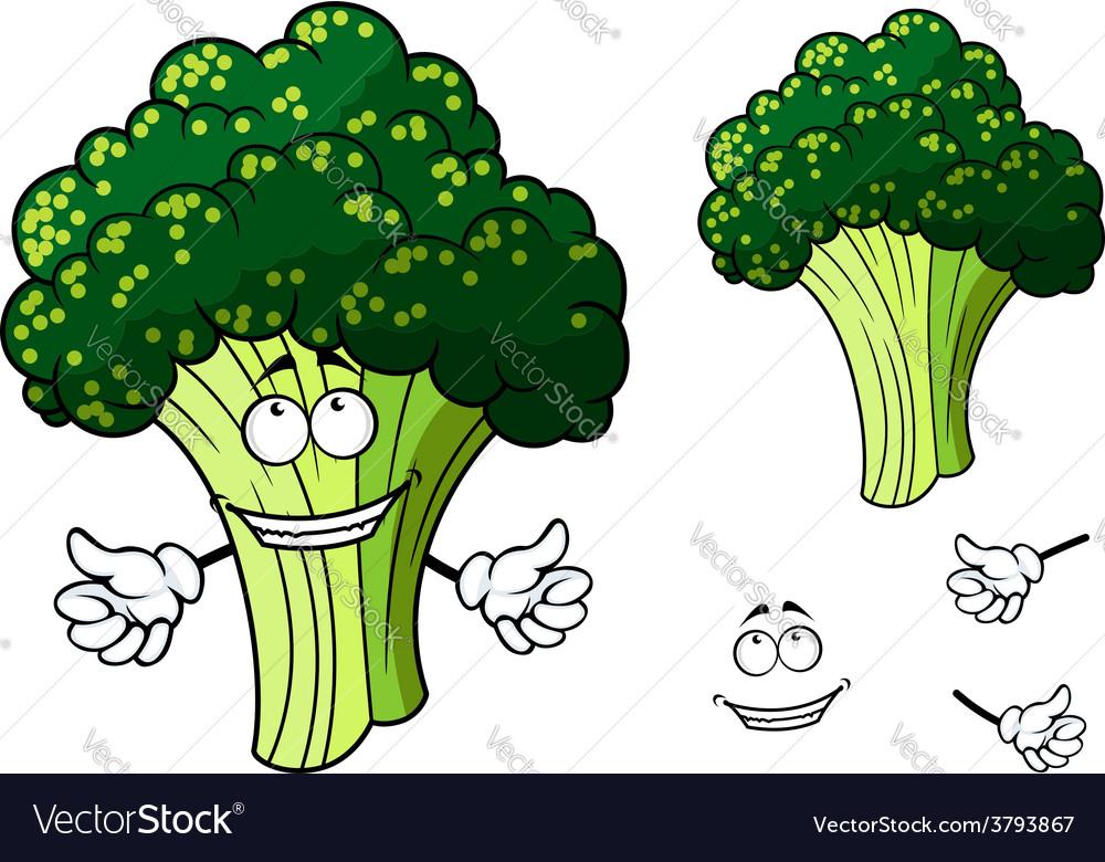 Happy fresh cartoon broccoli giving a thumbs up vector | Price: 1 Credit (USD $1)