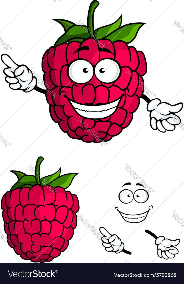 Cute happy smiling cartoon raspberry fruit vector | Price: 1 Credit (USD $1)