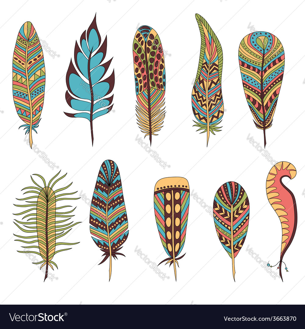 Set of ten feathers vector | Price: 1 Credit (USD $1)
