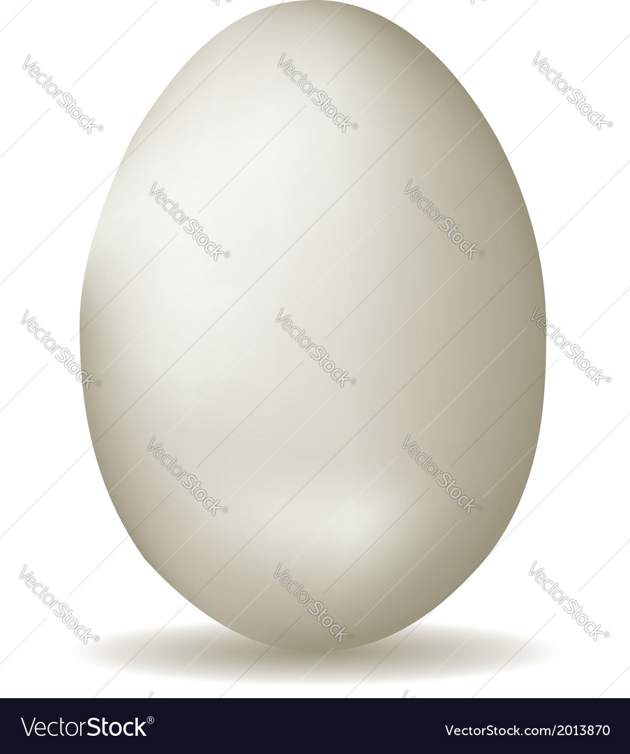 White egg vector | Price: 1 Credit (USD $1)