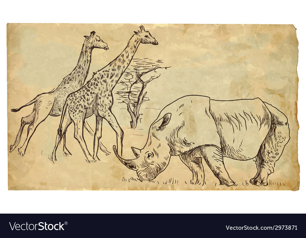 Rhinoceros and giraffes vector | Price: 1 Credit (USD $1)