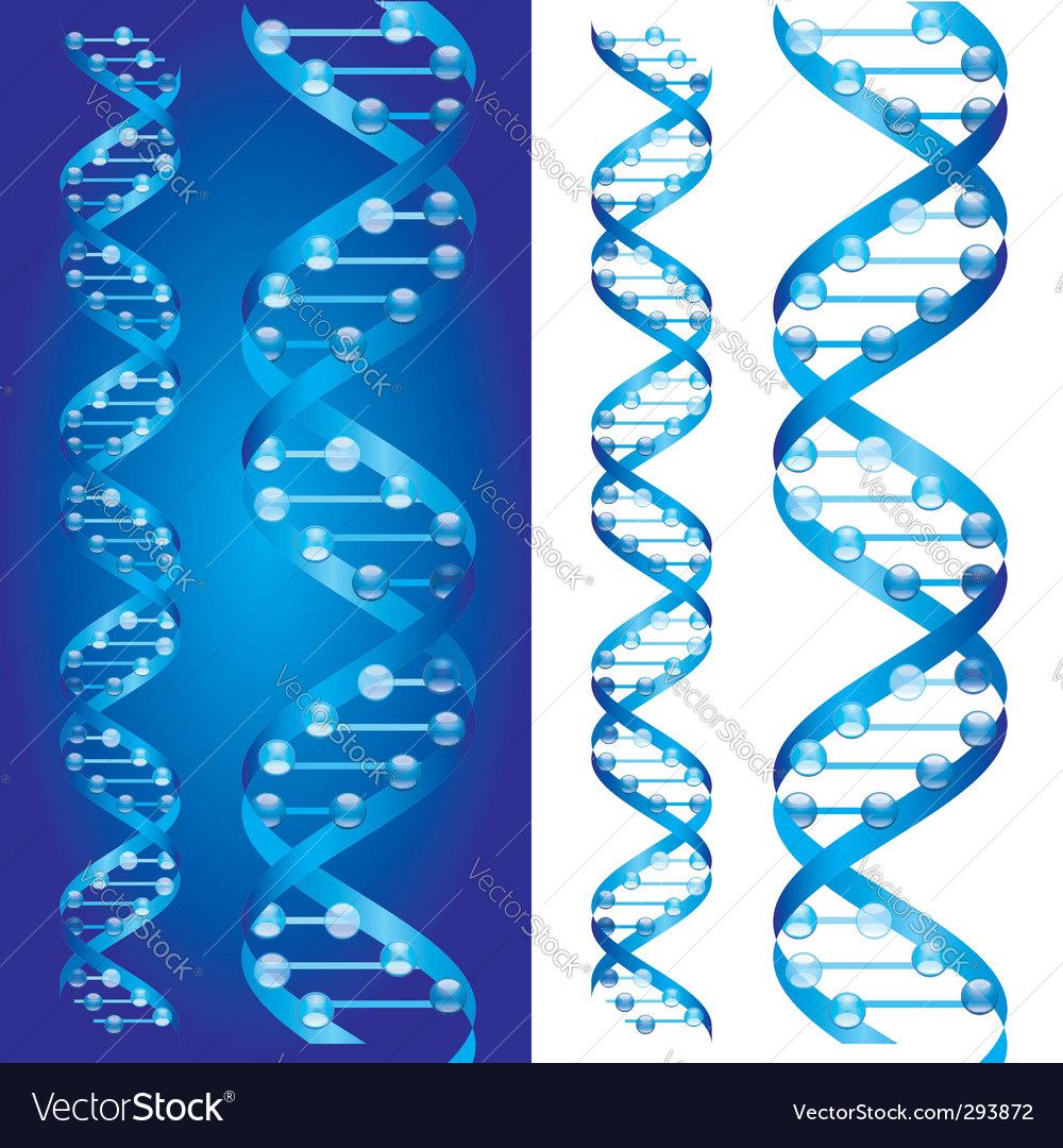 Dna chains vector | Price: 1 Credit (USD $1)