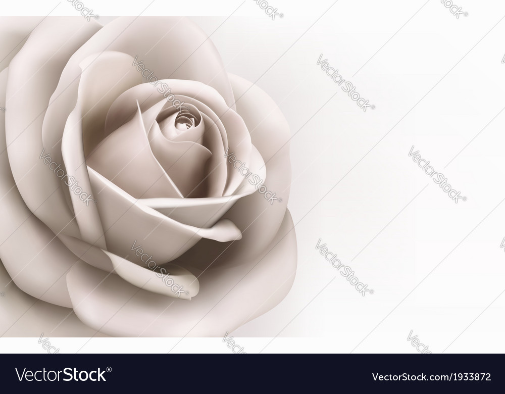 Vintage background with a beautiful pink rose vector   Price: 1 Credit (USD $1)