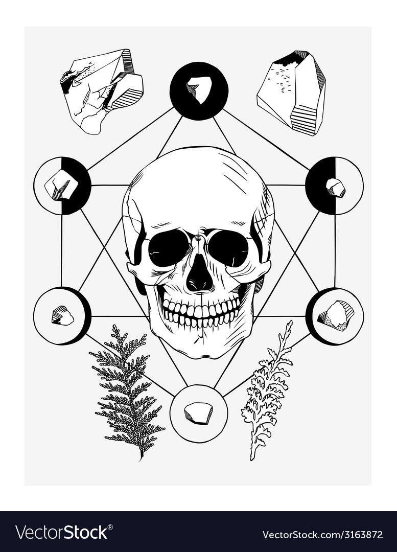 With skull and ritual things black contour vector | Price: 1 Credit (USD $1)