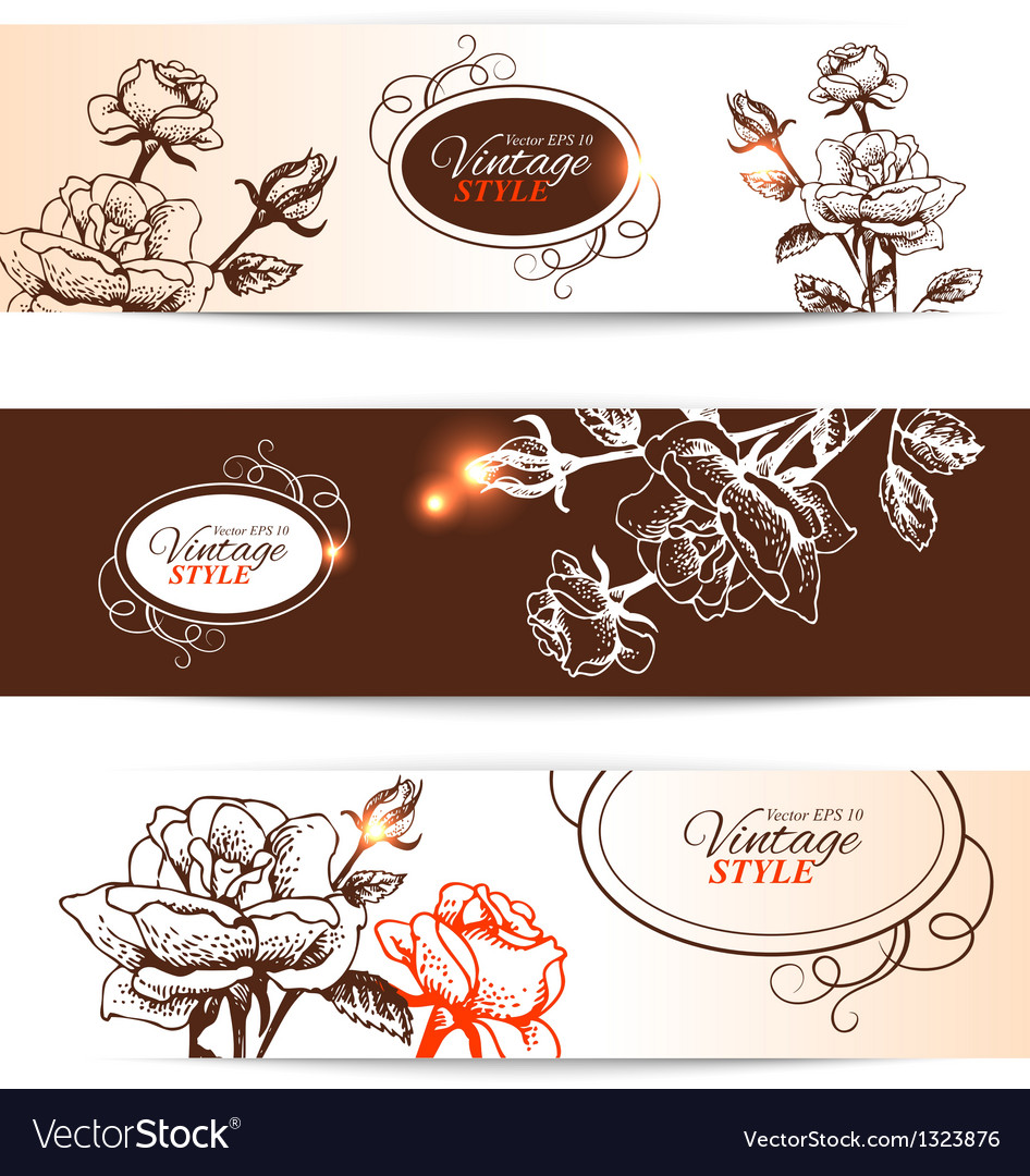 Vintage banners with hand drawn roses vector | Price: 1 Credit (USD $1)
