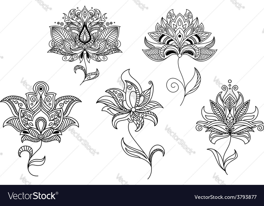 Persian and indian paisley flowers vector | Price: 1 Credit (USD $1)