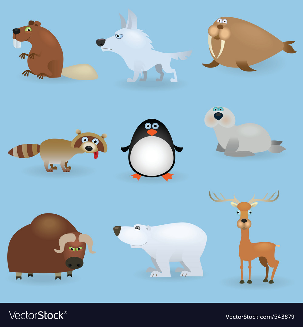 Cartoon wild animals vector | Price: 1 Credit (USD $1)
