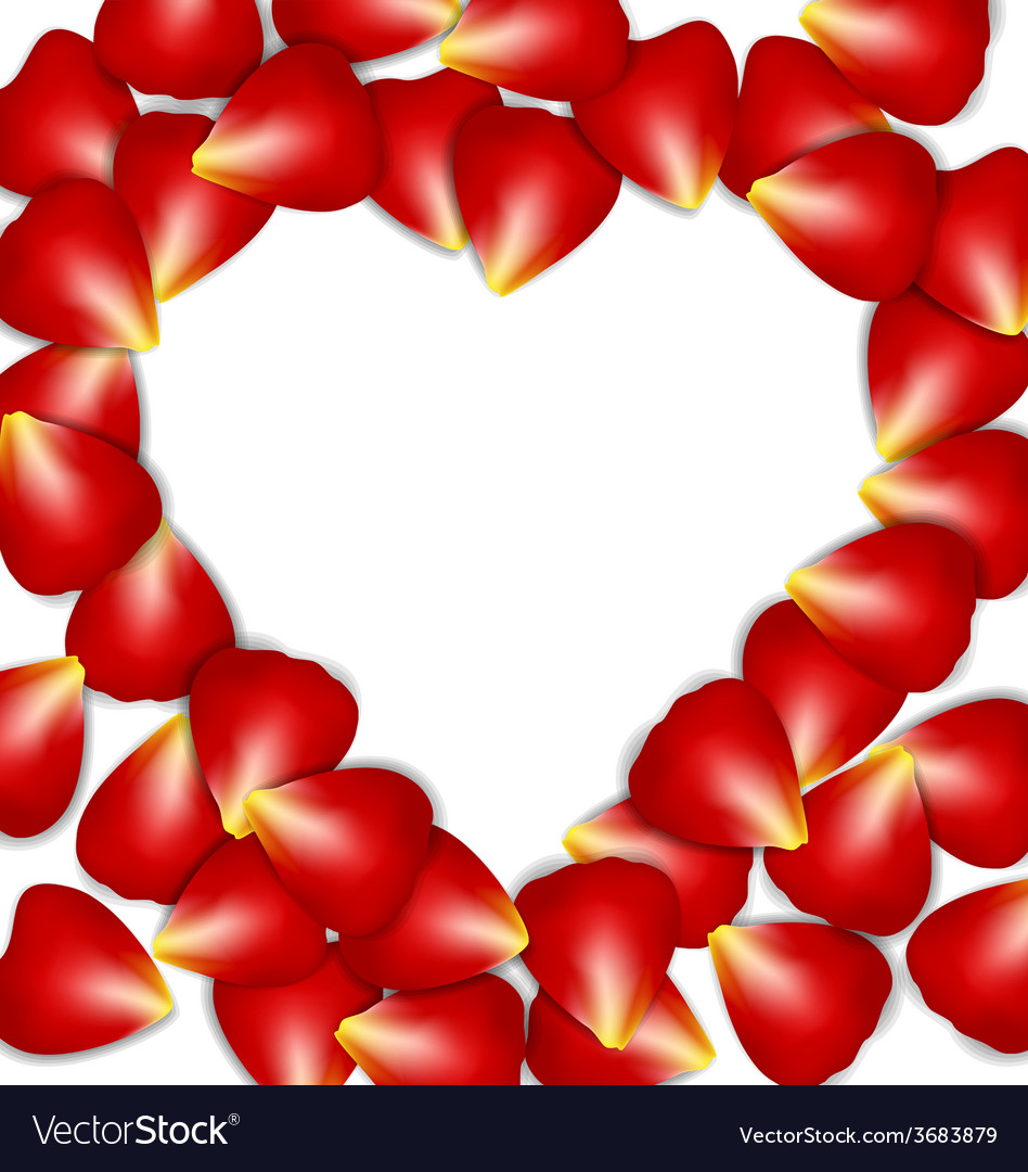 Heart frame from red rose petals vector | Price: 1 Credit (USD $1)