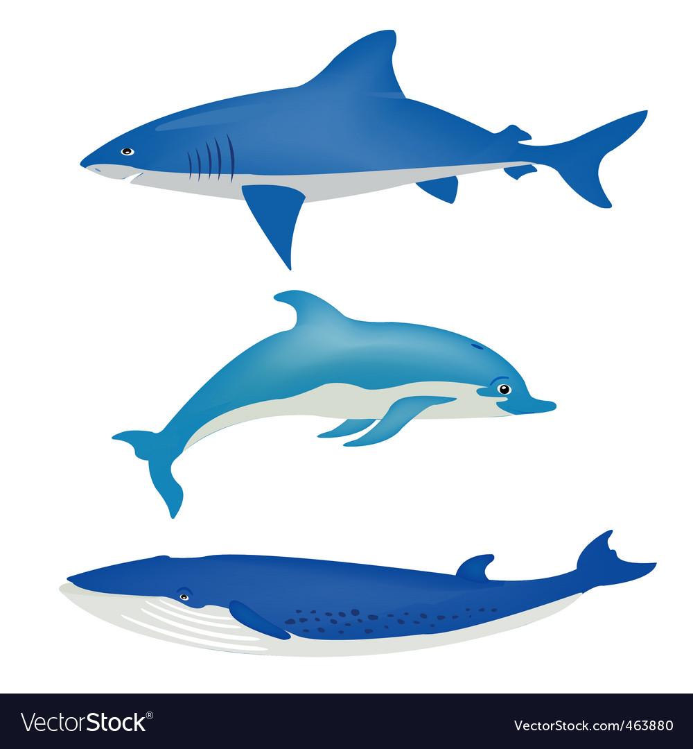 Sea animals on white vector | Price: 1 Credit (USD $1)