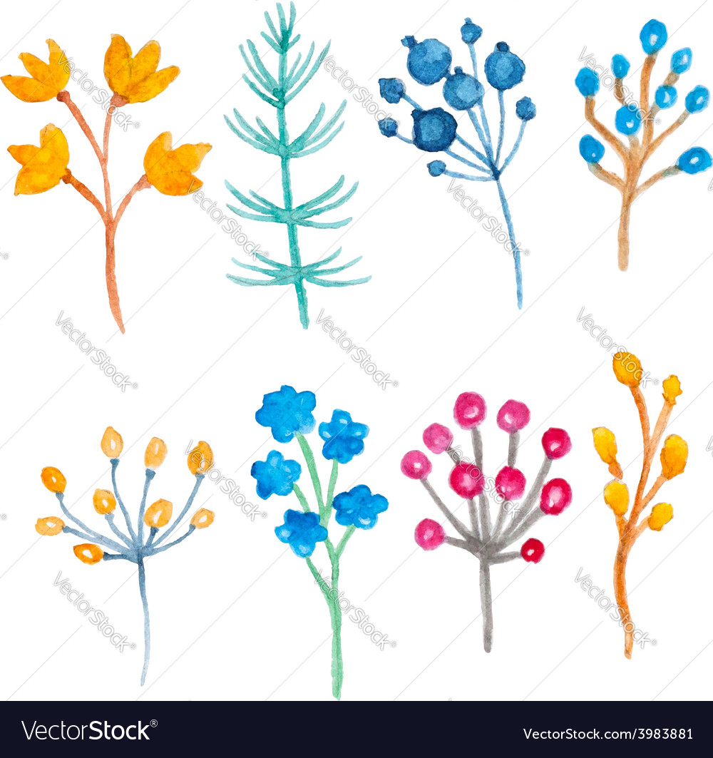 Set of watercolor floral elements vector | Price: 1 Credit (USD $1)