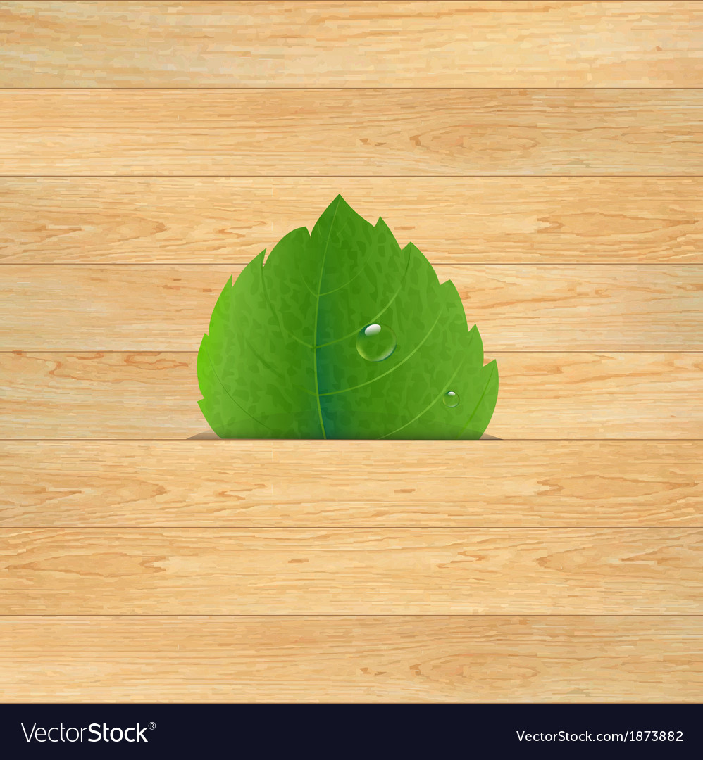 Wood texture with leaf vector | Price: 1 Credit (USD $1)
