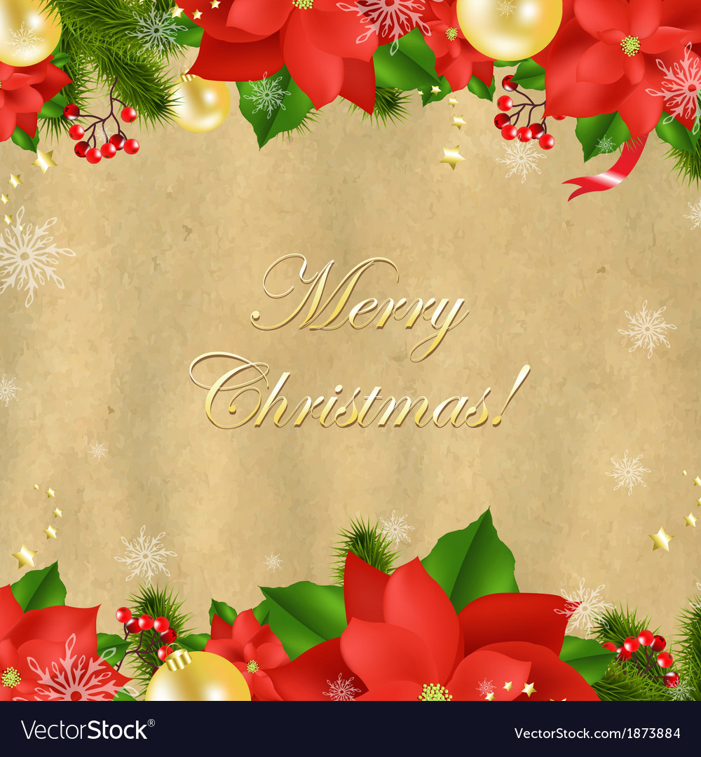 Christmas card with poinsettia vector | Price: 1 Credit (USD $1)