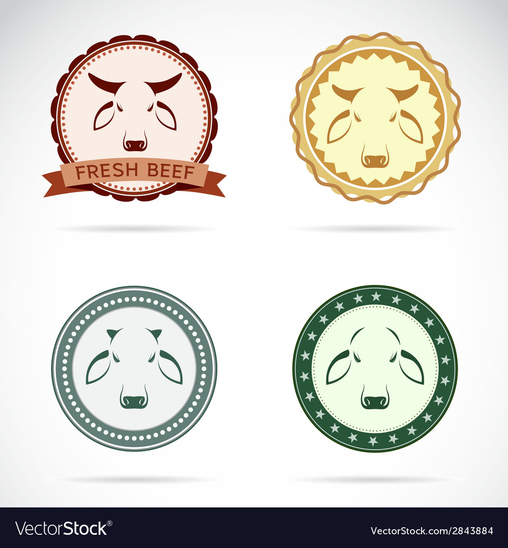 Set of cow label vector | Price: 1 Credit (USD $1)