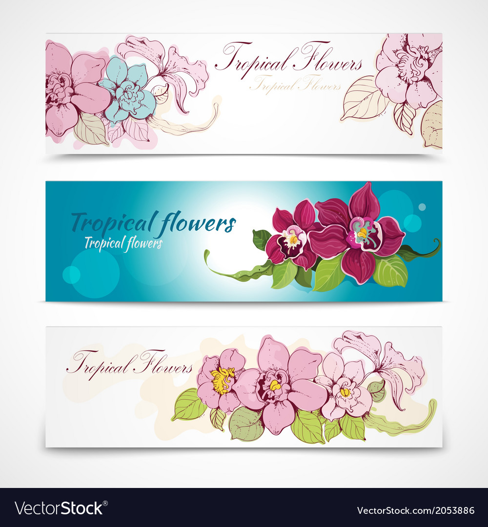 Tropical flower banners vector | Price: 1 Credit (USD $1)