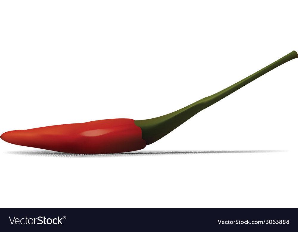 Red hot chili vector | Price: 1 Credit (USD $1)