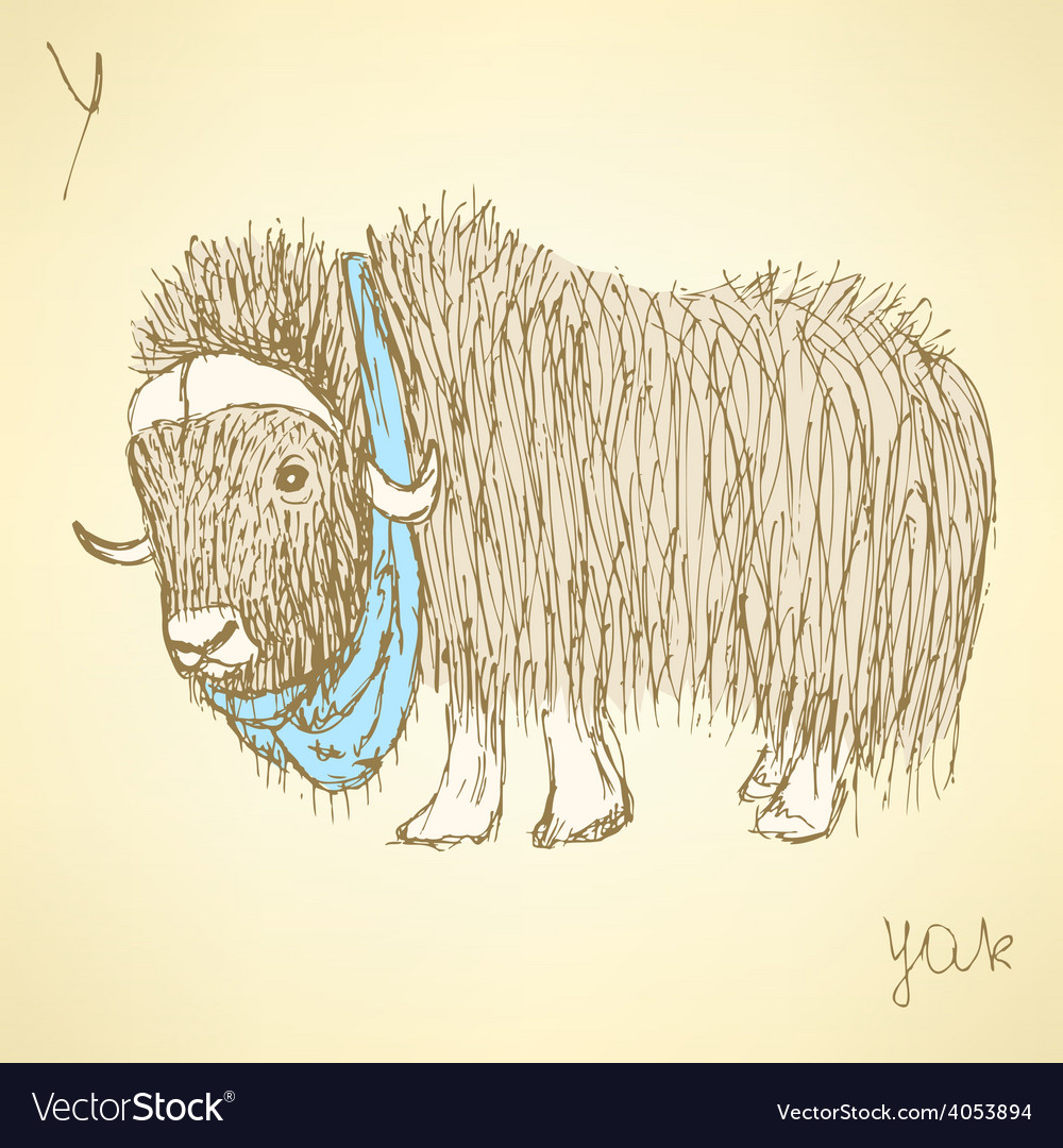 Sketch fancy yak in vintage style vector | Price: 1 Credit (USD $1)