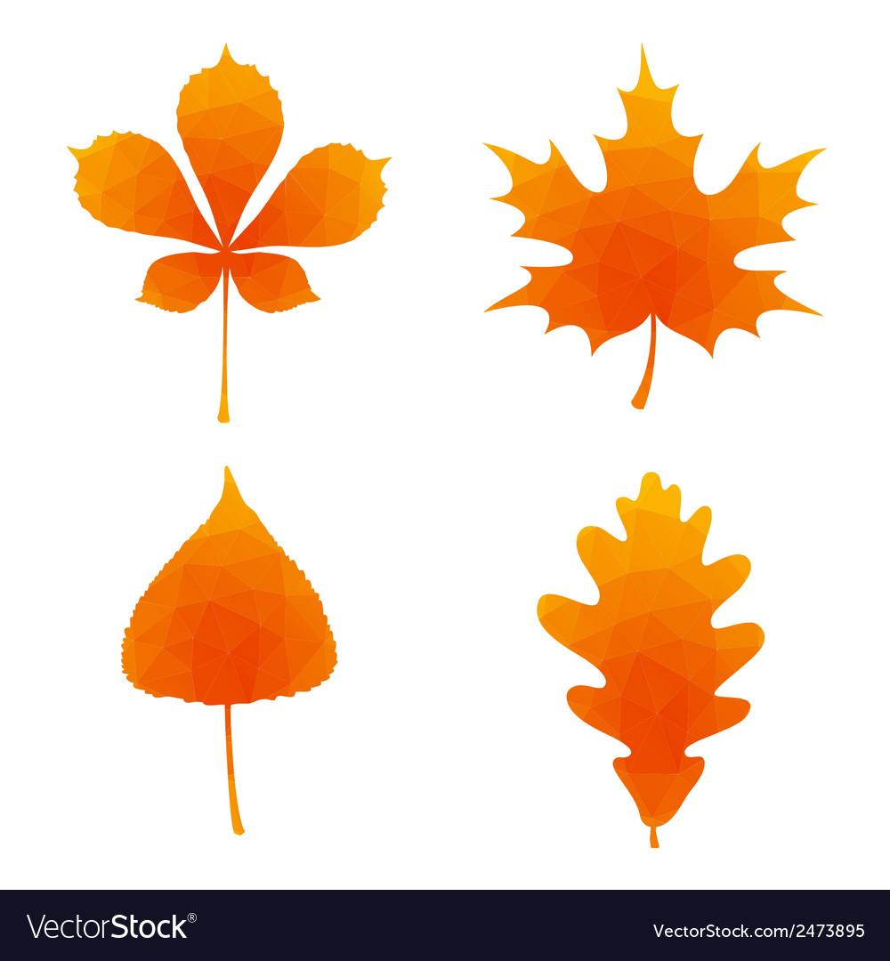 Autumn leaves set vector | Price: 1 Credit (USD $1)