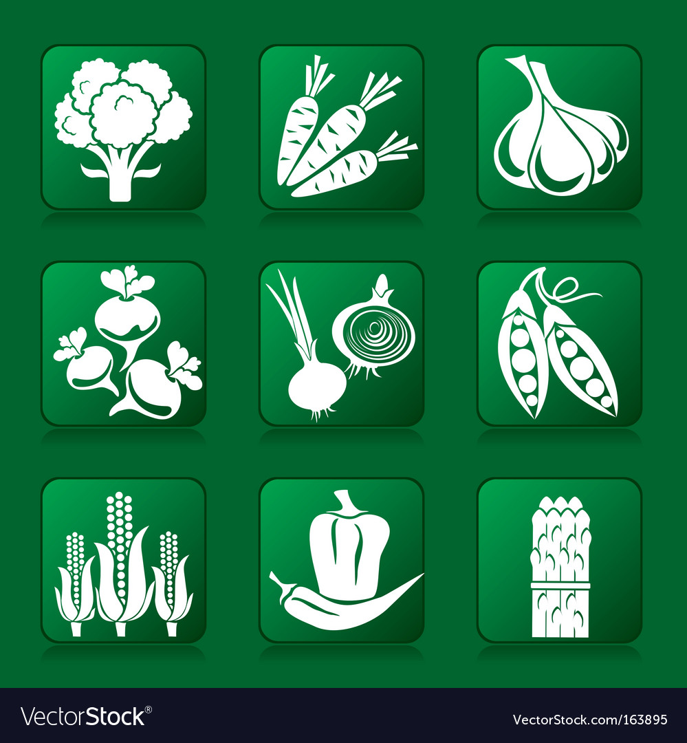 Vegetable buttons vector | Price: 1 Credit (USD $1)