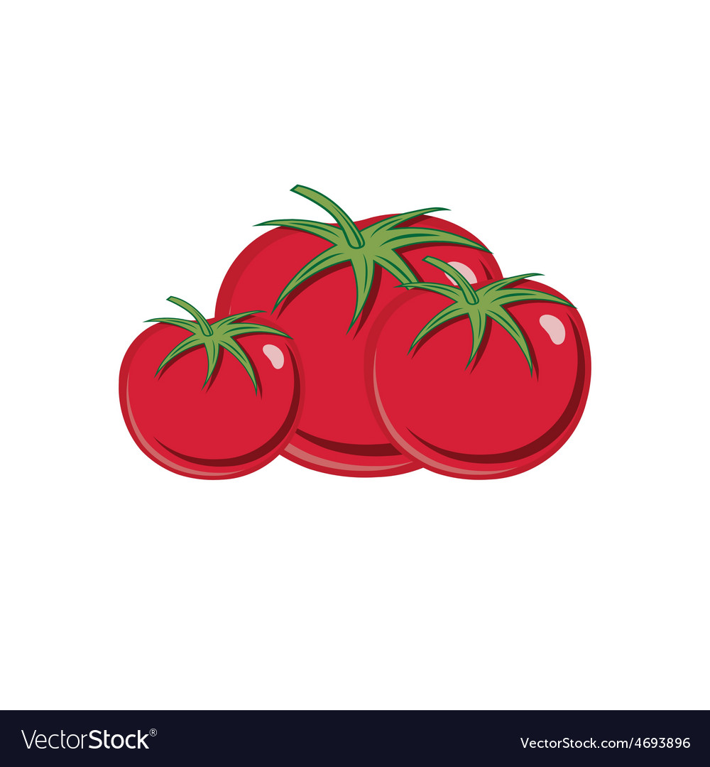 Red ripe tomatoes isolated on white backgroud vector | Price: 1 Credit (USD $1)