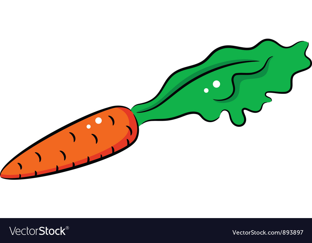 Carrot vector | Price: 1 Credit (USD $1)