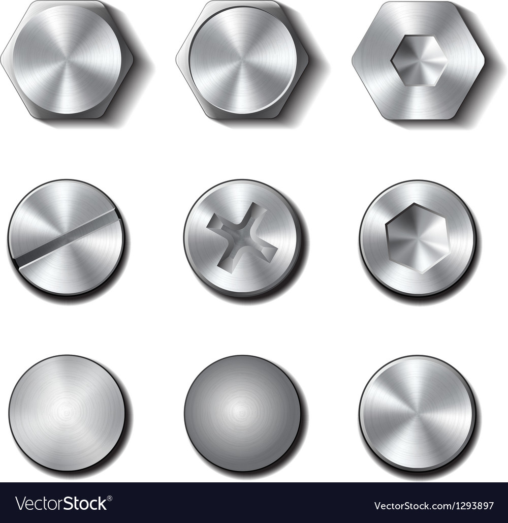 Set of screws and bolts on white background vector