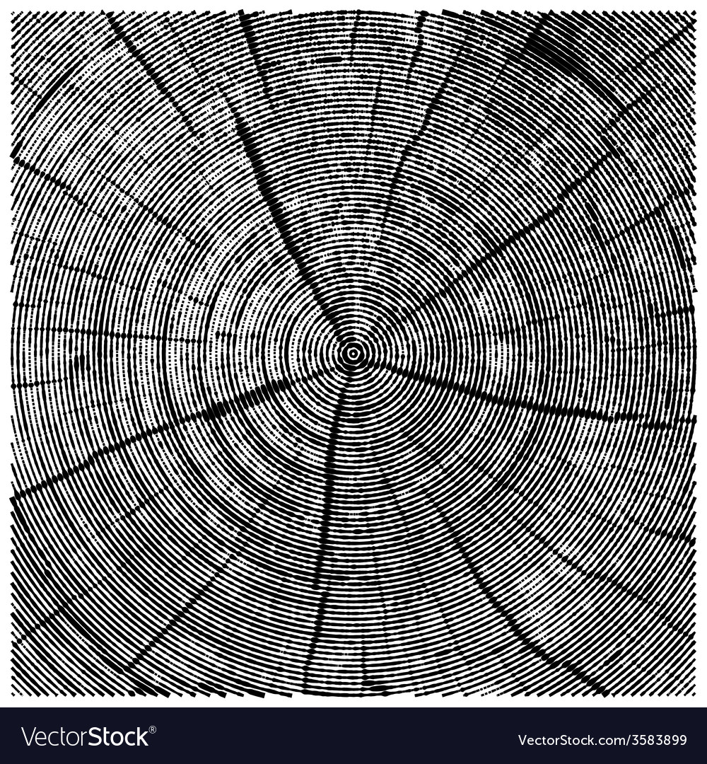 Natural of engraving saw cut tree trunk abstract vector | Price: 1 Credit (USD $1)