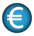 Euro money button vector
