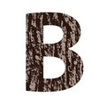 Wooden letter b made from oak bark vector