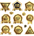 Gold tag set vector