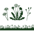 Dandelion and grass vector