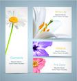 Flower blossom templates design vector