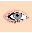 Open female eyes image with beautifully fashion vector