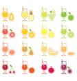 Fruit juice icon set vector